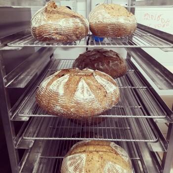5 PANI DIVERSI (1 BIO) - CESTO con 5 tipi di pane con lievito madre da 860 gr cad. - Sconto 15%